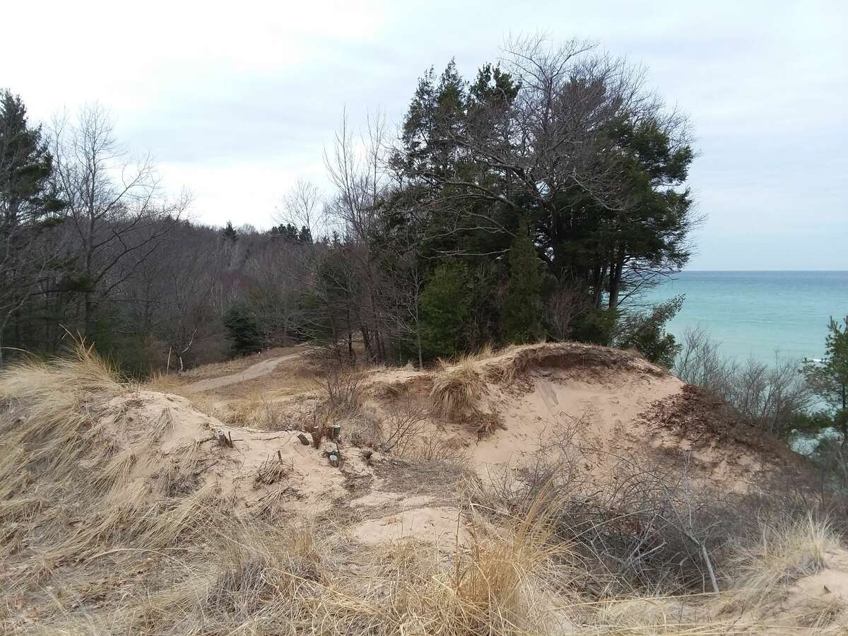 Magoon Creek in Manistee County offers secluded trails and approximately 2,000 feet of shoreline.