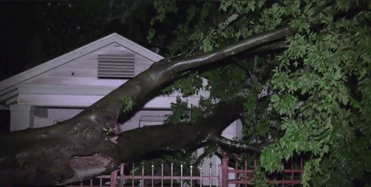 A tree fell into the front yard of a Houston resident late Friday as thunderstorms rolled through.