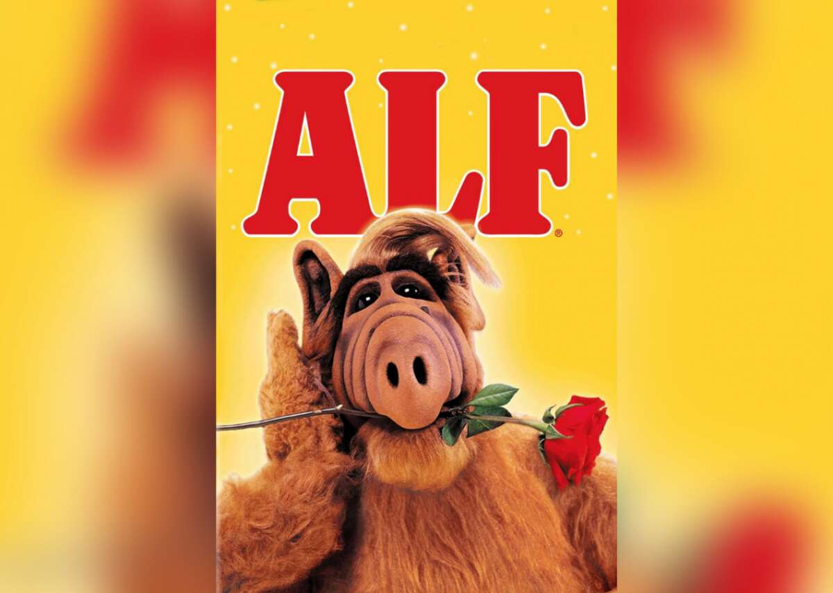 """#99. ALF - IMDb user rating: 7.4 - Years on the air: 1986-1990 ALF stands for alien life form, and referred to a furry cat-eating alien named Gordon from the planet Melmac who lived in a family's garage. The show ran for more than 100 episodes, and became a pop-culture phenomenon with its own cartoon spinoff, a Marvel comic book, and appearances in other TV shows like """"Matlock,"""" """"Blossom,"""" and """"Hollywood Squares."""""""