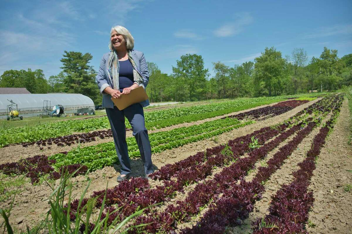 Teri Ptacek, executive director of Agricultural Stewardship Association, at Denison Farm on Tuesday, May 25, 2021, in Schaghticoke, N.Y. The Denison Farm was conserved by the farm owners with the help of the Agricultural Stewardship Association. (Paul Buckowski/Times Union)