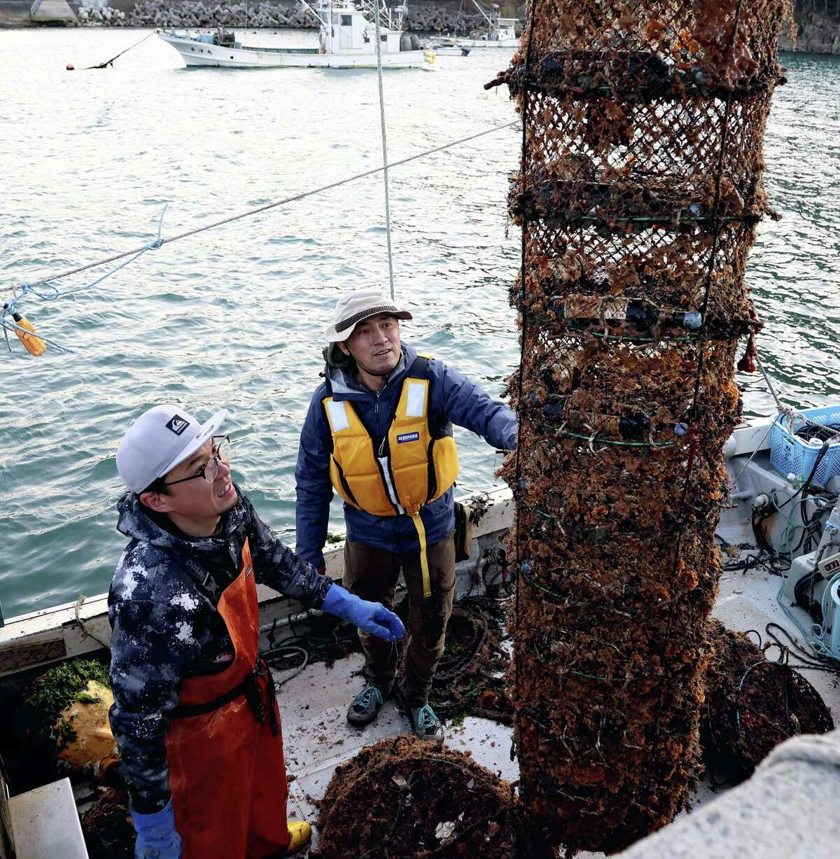 Michihiko Sasaki, right, checks wine that has aged under the sea in oyster cages in Minami-Sanriku, Miyagi Prefecture, Japan on April 21, 2021.