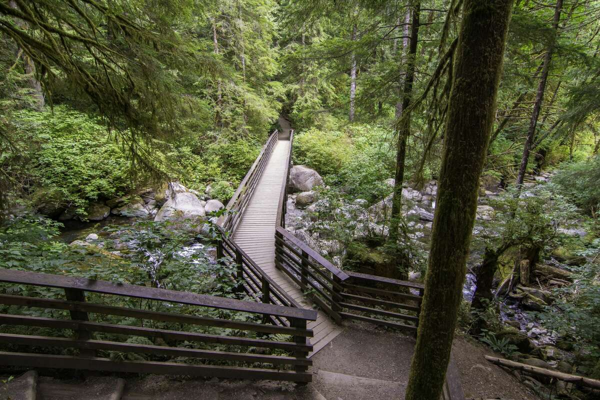 Trail in Wallace Falls State Park.