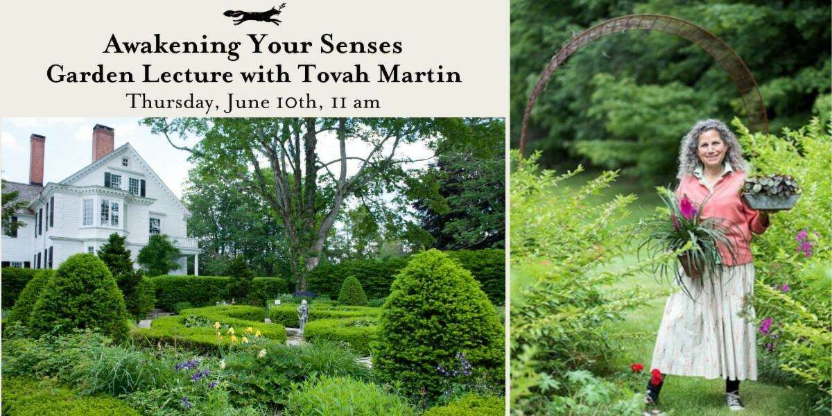 Tovah Martin brings her knowledge and style to the Bellamy Ferriday House and Garden in Bethlehem for a program June 10.