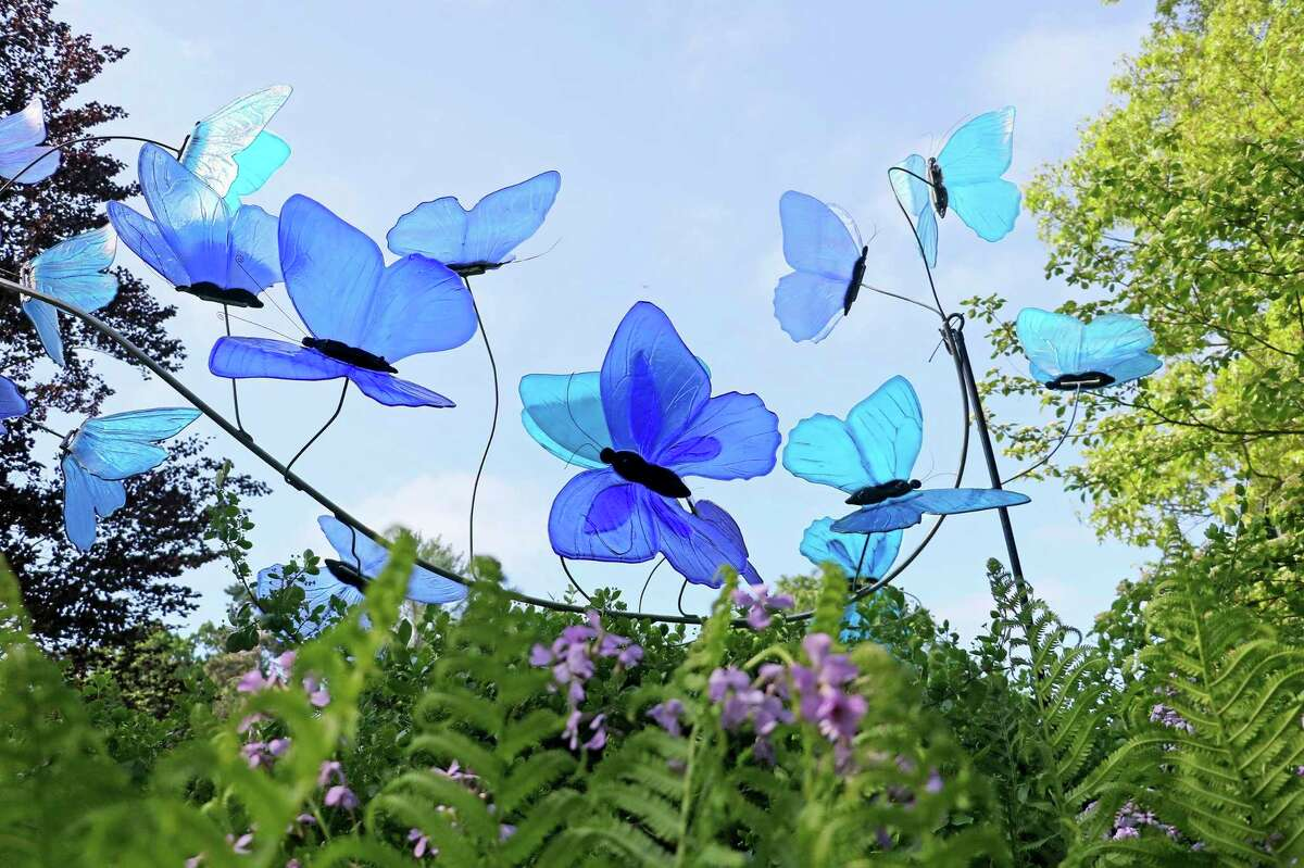 Fourteen 18-inch Blue Morpho butterflies, made of iridescent blue glass, fly across a stainless-steel support. (Photo provided)