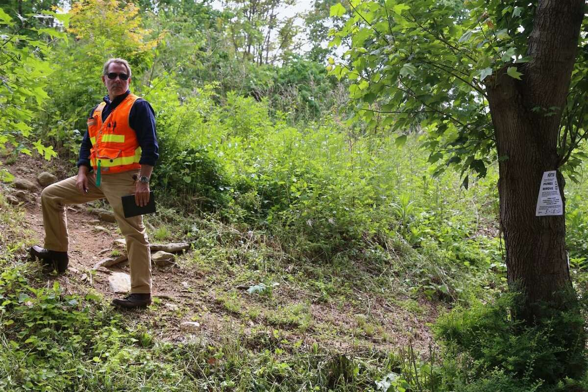 George Stumpf, arborist with Eversource, takes a closer look at the landscape along Little Brook Road on Tuesday, June 1, 2021.