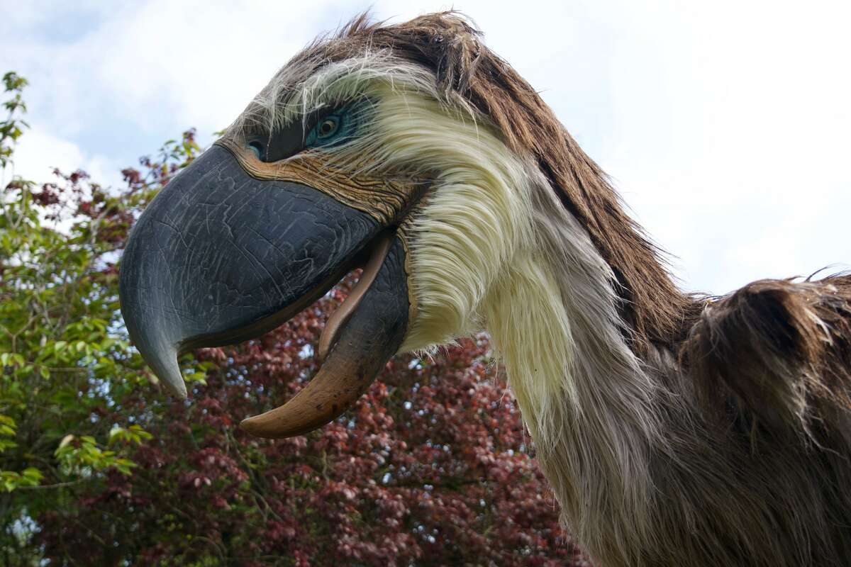 Real or fake? See for yourself at the Houston Zoo's Prehistoric Beasts exhibit.