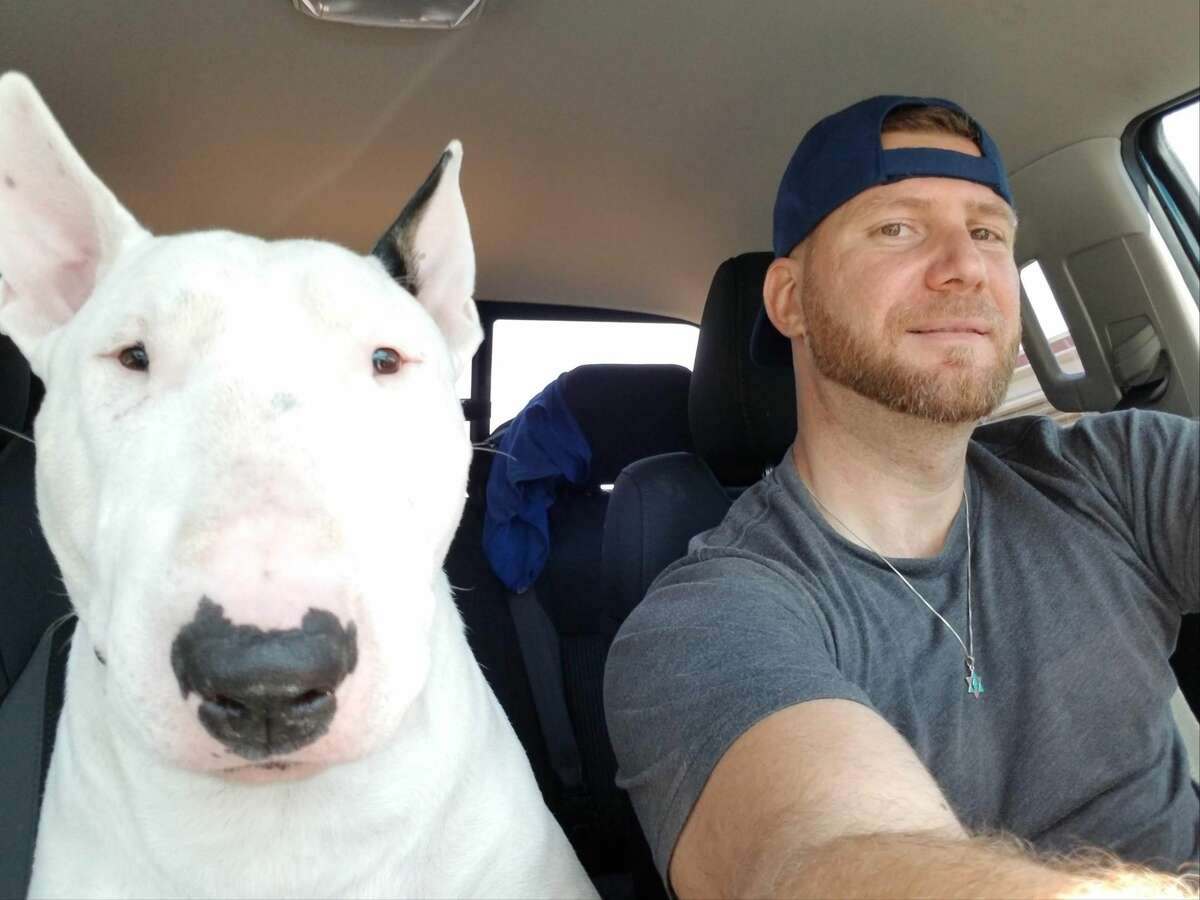 Local construction business owner Roi Biton lost his white Bull Terrier nearly seven months ago and has recently increased the reward to $20,000.