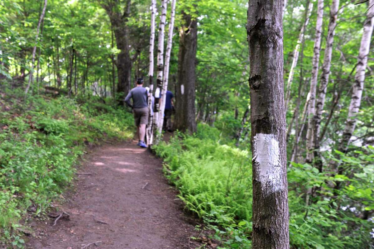 A Trails Day hike will take place at Danbury's Tarrywile Park on Saturday.
