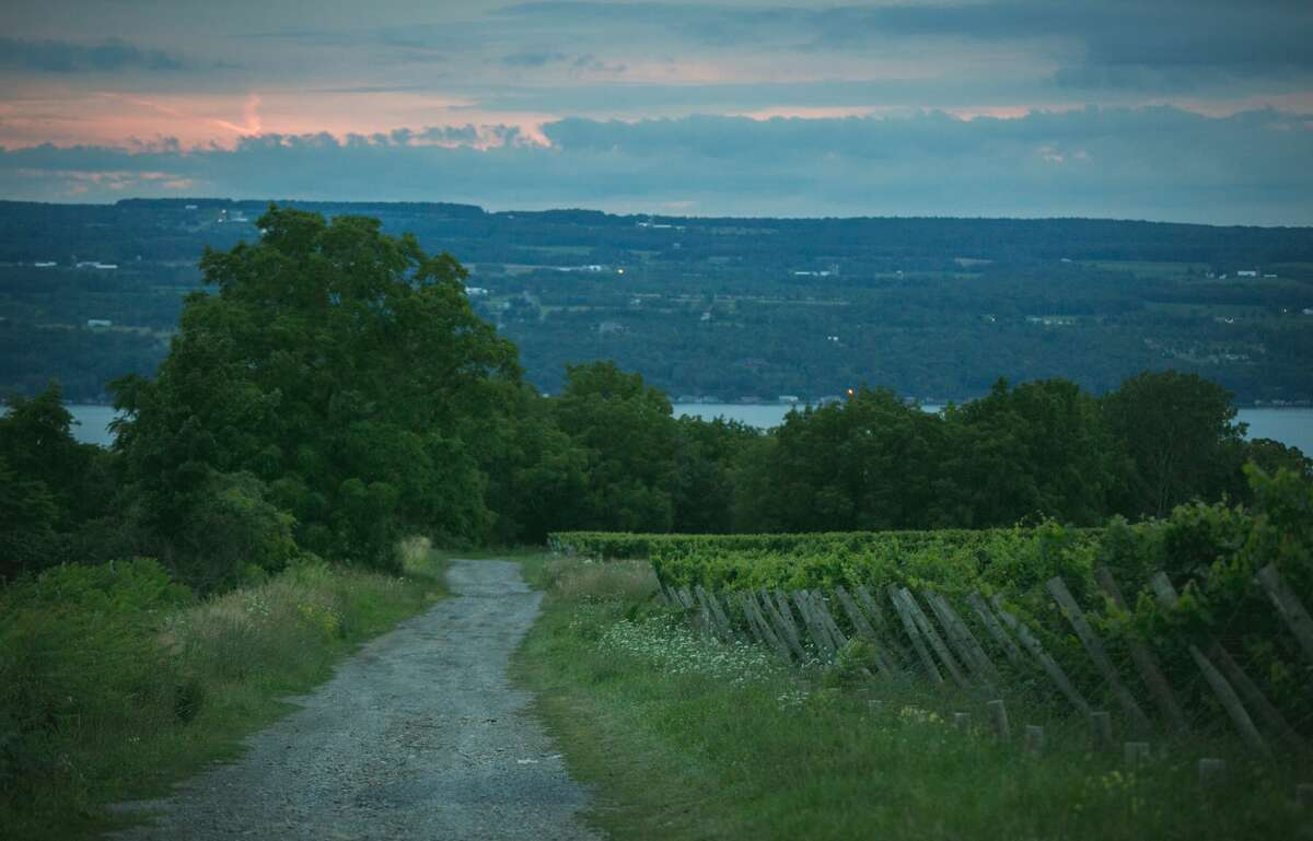 The Finger Lakes is the country's third-largest wine-producing region, after California and Oregon. Its 11 lakes create a