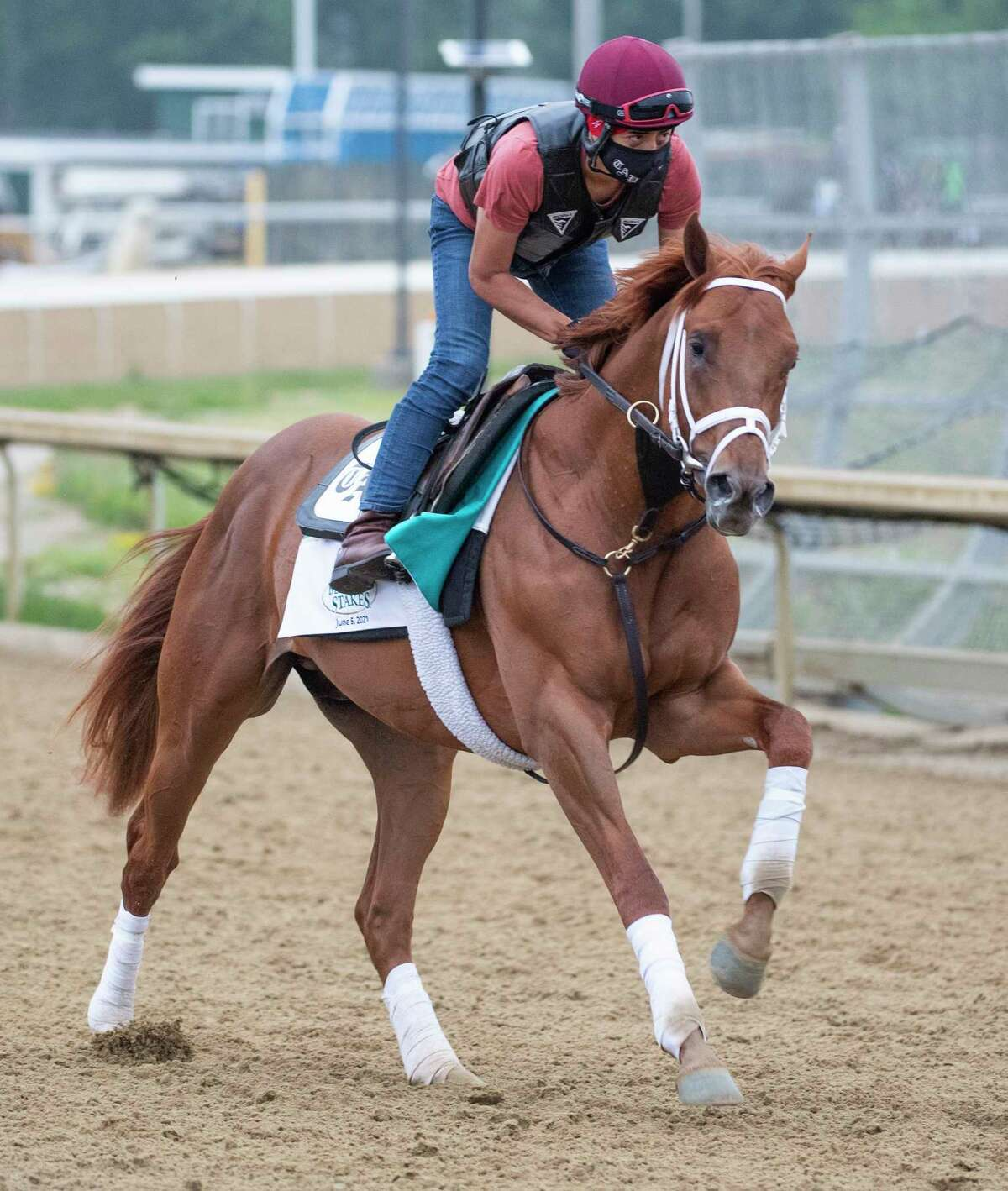 Known Agenda gets in some morning exercise on the training track at Belmont Park on Thursday June 3, 2021, in advance of the Belmont Stakes.