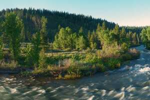 The Truckee Donner Land Trust finalized a deal to acquire the 'wild side' of Truckee, conserving the land for public use.