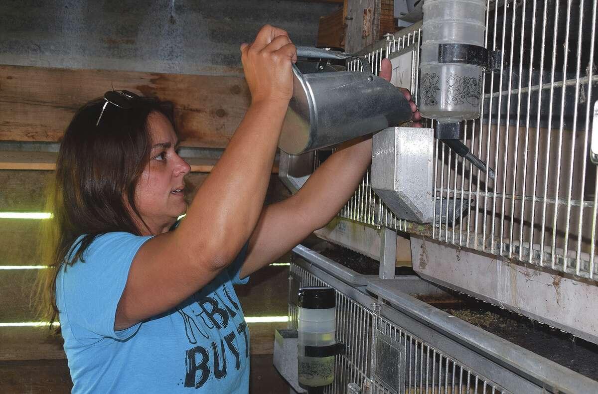 Greenfield High School teacher Beth Burrow feeds rabbits Thursday at the school's farm.