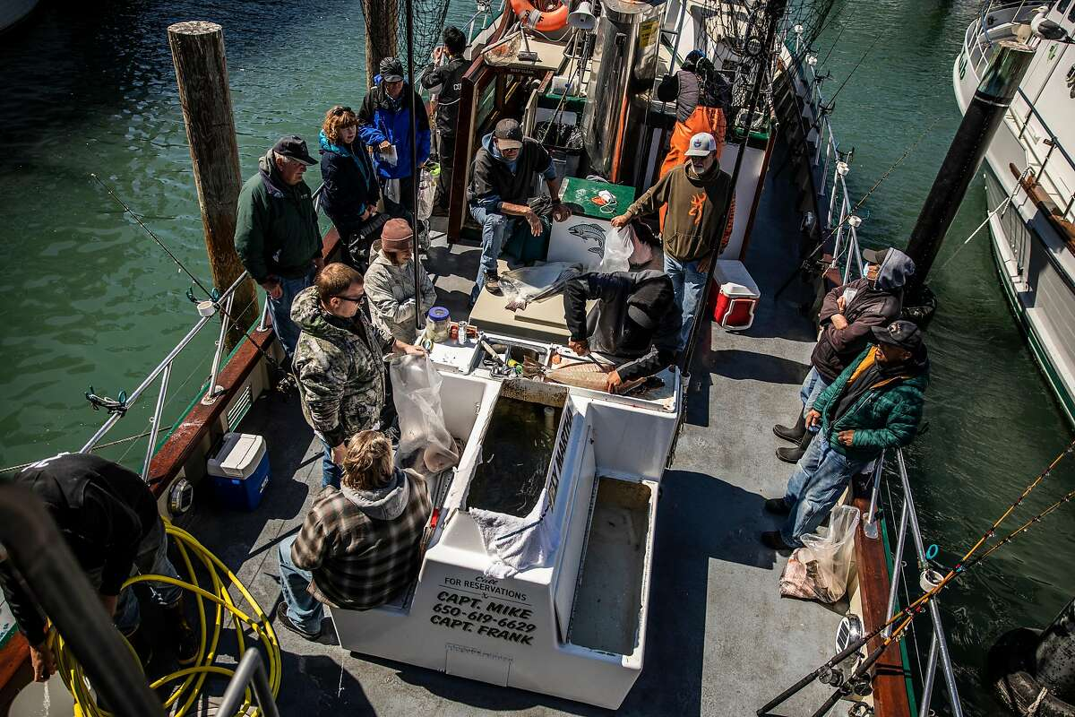 Clients of the Lovely Martha watch as deckhand Andrew Beard (center) filets a freshly caught halibut.