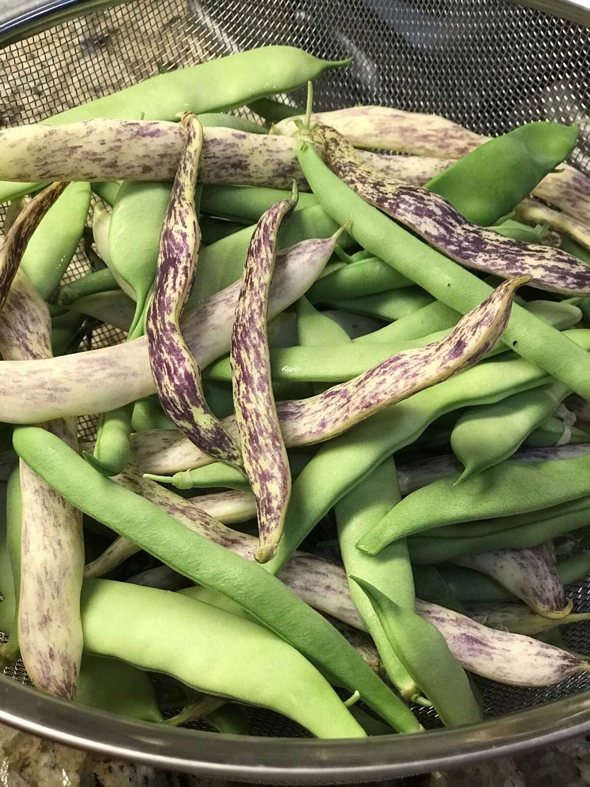 'Dragon's Tongue' bush beans are a pale cream color with purple streaks. When cooked, they turn pale green.