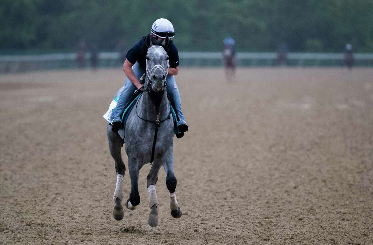 Essential Quality, the morning-line favorite in the Belmont Stakes, on the training track for his morning exercise at Belmont Park on Friday, June 4, 2021, in Elmont.