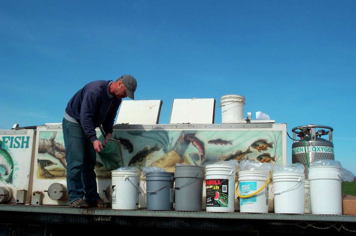 A Harrietta Hills Trout Farm fish truck distributes fish to new owners. (Courtesy/Mason-Lake Conservation District)