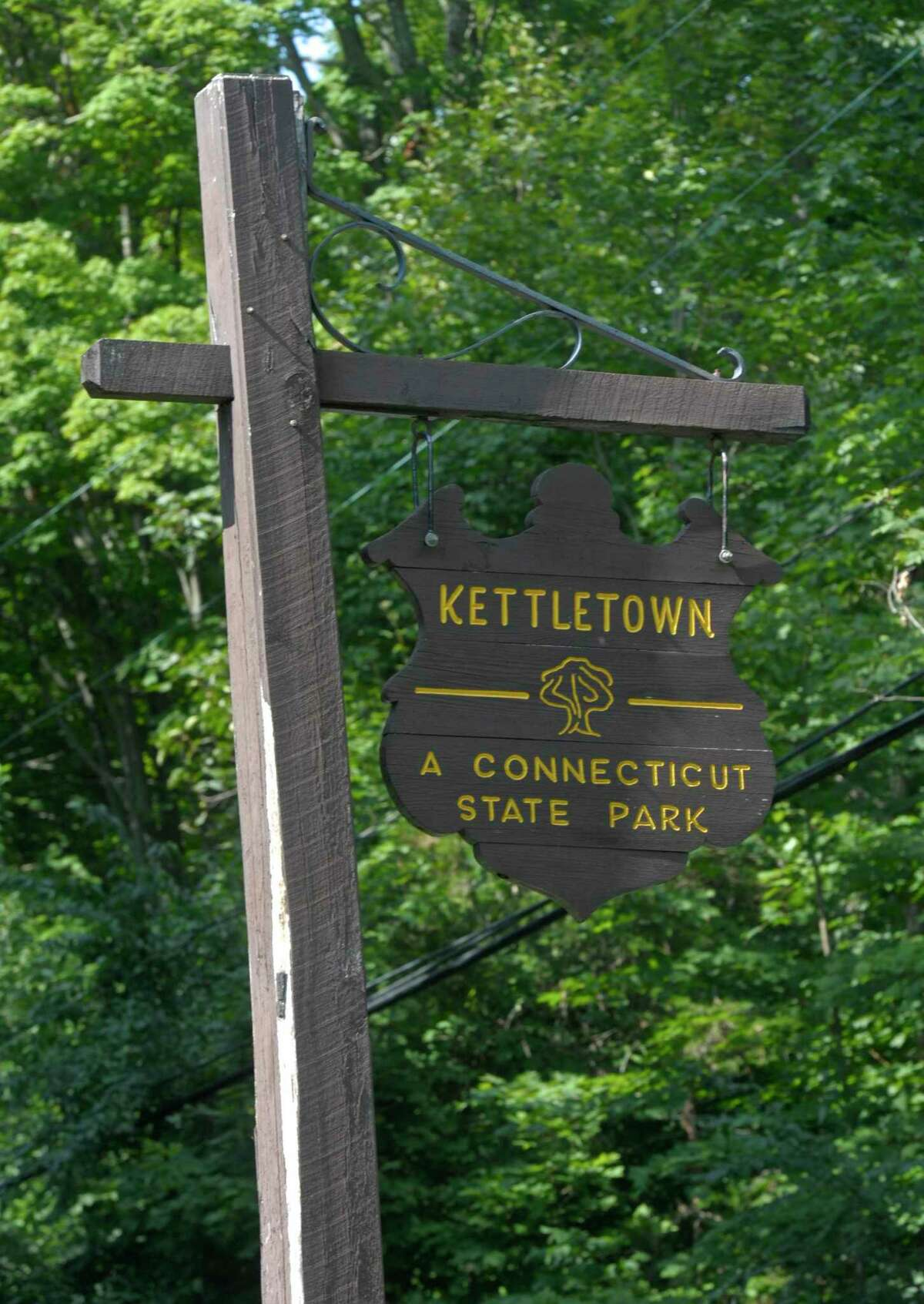 Large cyanobacteria blooms in Kettletown State Park has closed the beach. Officials expect the blooms will keep the beach closed for the rest of the season. Thursday, August 9, 2019, in Southbury, Conn.