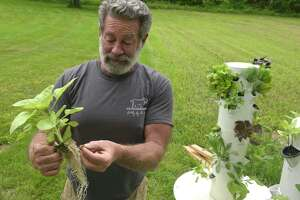 Hamilton Brower is starting a new nonprofit initiative that he's calling Nourish New Milford that utilizes aeroponic towers to cultivate fresh produce. Friday morning, June 4, 2021, in New Milford, Conn. Brower holds a plant that is grown in rock wool, spun lava rock.