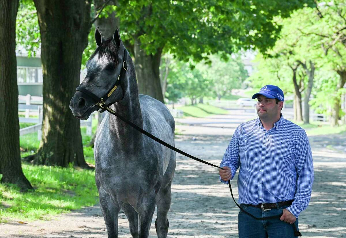 2021 Belmont Stakes winner Essential Quality with trainer Brad Cox at Belmont Park Sunday June 6, 2021 in Elmont, N.Y. . Photo Special to the Times Union by Skip Dickstein