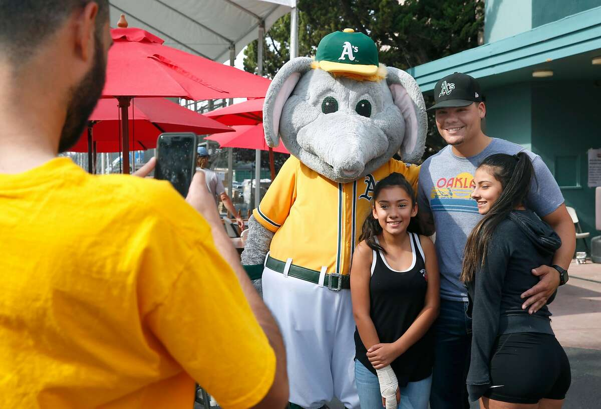Oakland A's mascot Stomper and catcher Bruce Maxwell pose for photos with Paris Gaona (left) and Precious Munoz during a visit to the Red Cross shelter at the Sonoma County Fairgrounds in Santa Rosa, Calif. on Tuesday Oct. 17, 2017.