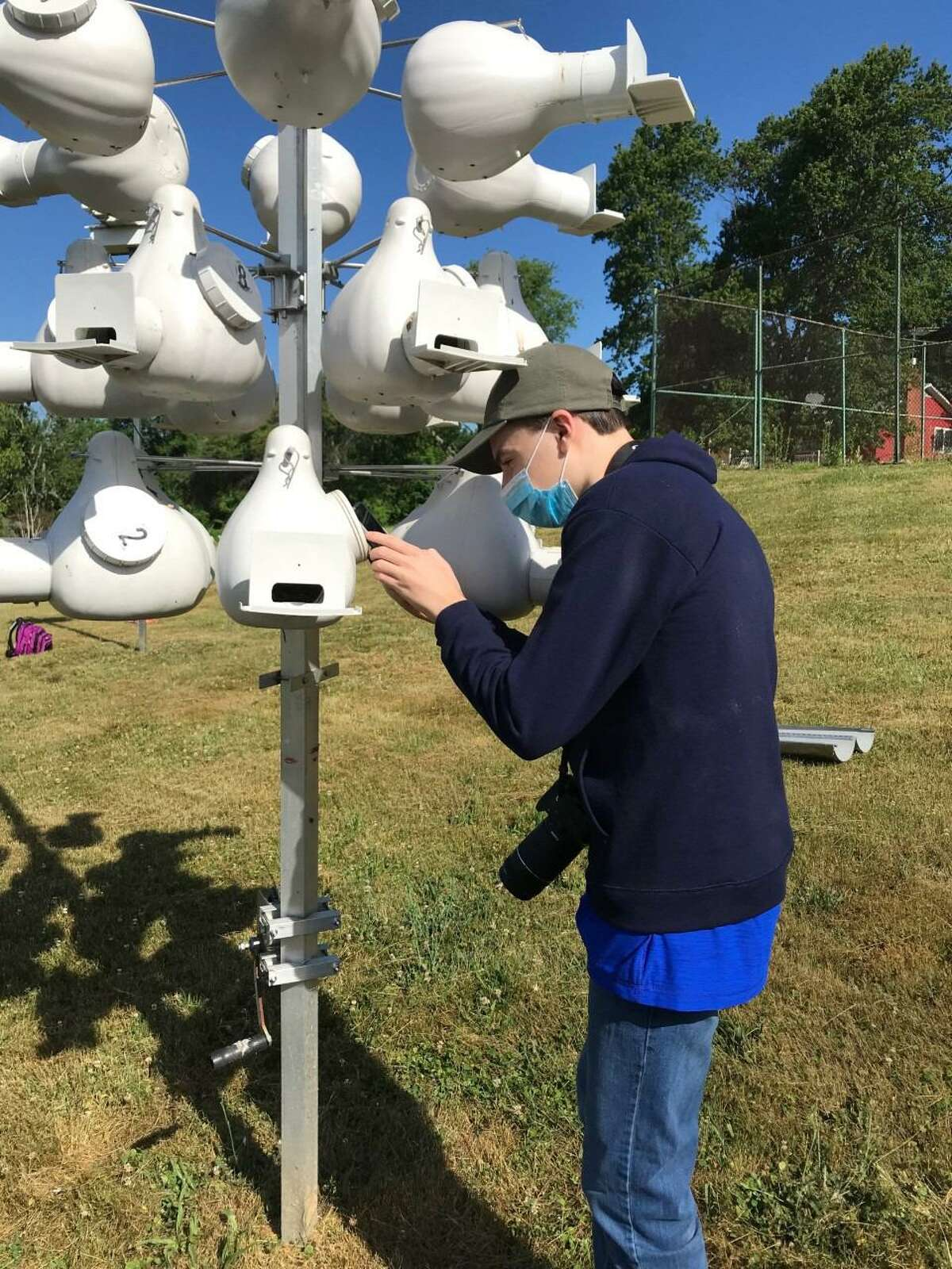Brennan Wilkins helps to monitor Purple Martin colonies on the school's campus, and in the area, during the late spring and early summer.