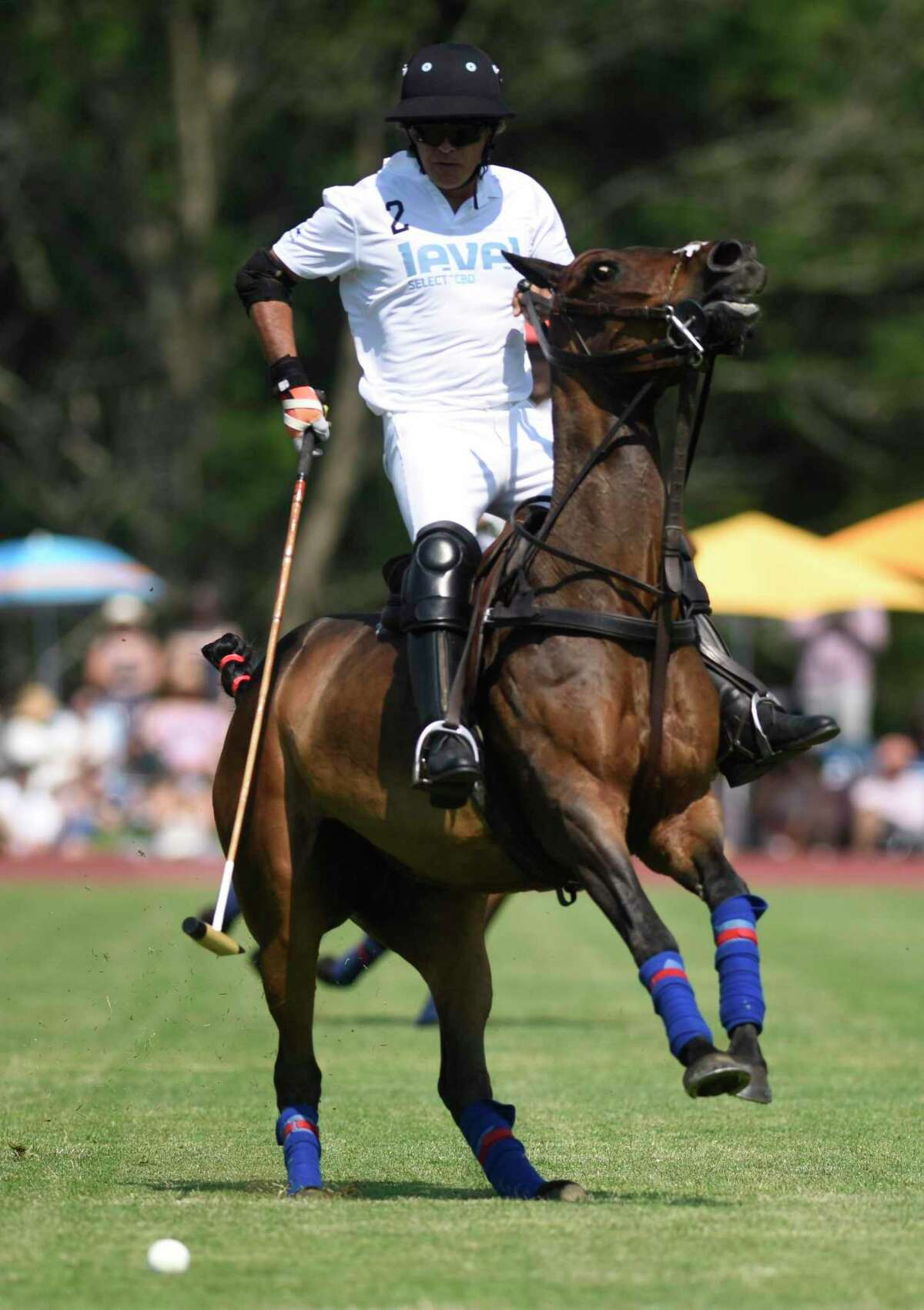 Photos from the season-opening match at the Greenwich Polo Club in Greenwich, Conn. Sunday, June 6, 2021. Level Select CBD played Palm Beach Equine in the East Coast Bronze Cup 2021 match before a sold out crowd.