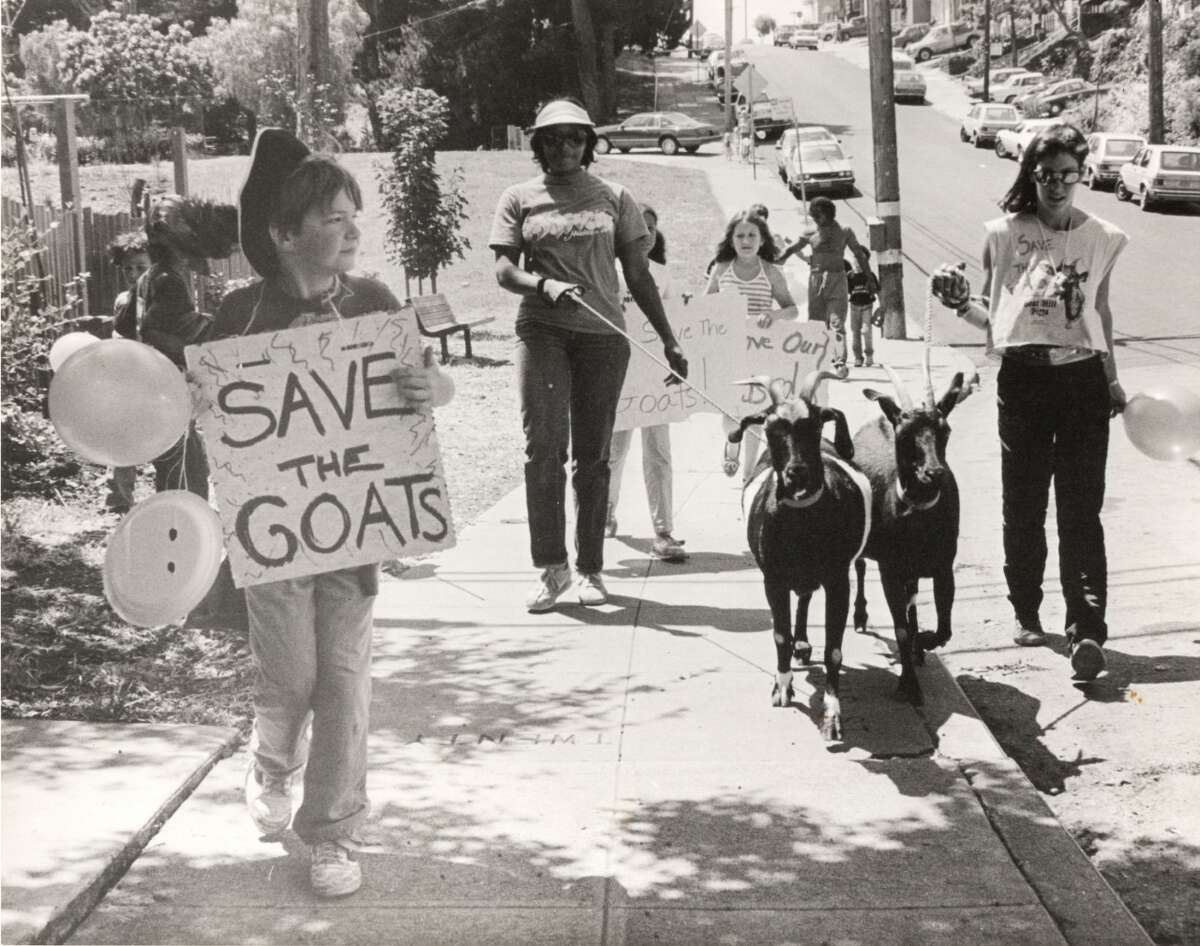 Potrero Hill residents Gail Wetmore and Loris Lipski lead a parade down Arkansas Street to protestthe removal of Goat Hill Pizza's unofficial mascots in 1984.