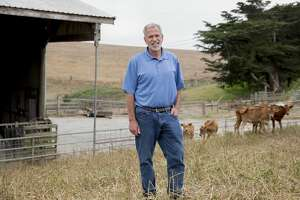 Albert Straus of Straus Family Creamery poses for a portrait at Silva Family Dairy in Tomales, Calif., in 2019.