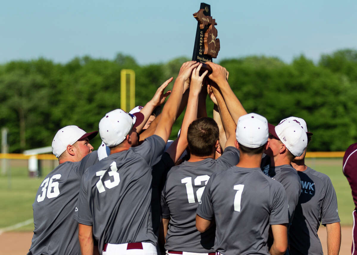 The Cass City varsity baseball team claimed the District 91 championship on Saturday with a 8-6 victory over a tough Bad Axe team in Cass City. The Red Hawks move on the regional semifinals against the Reese Rockets on Wednesday at Brown City High School. First pitch is scheduled for 4 p.m.