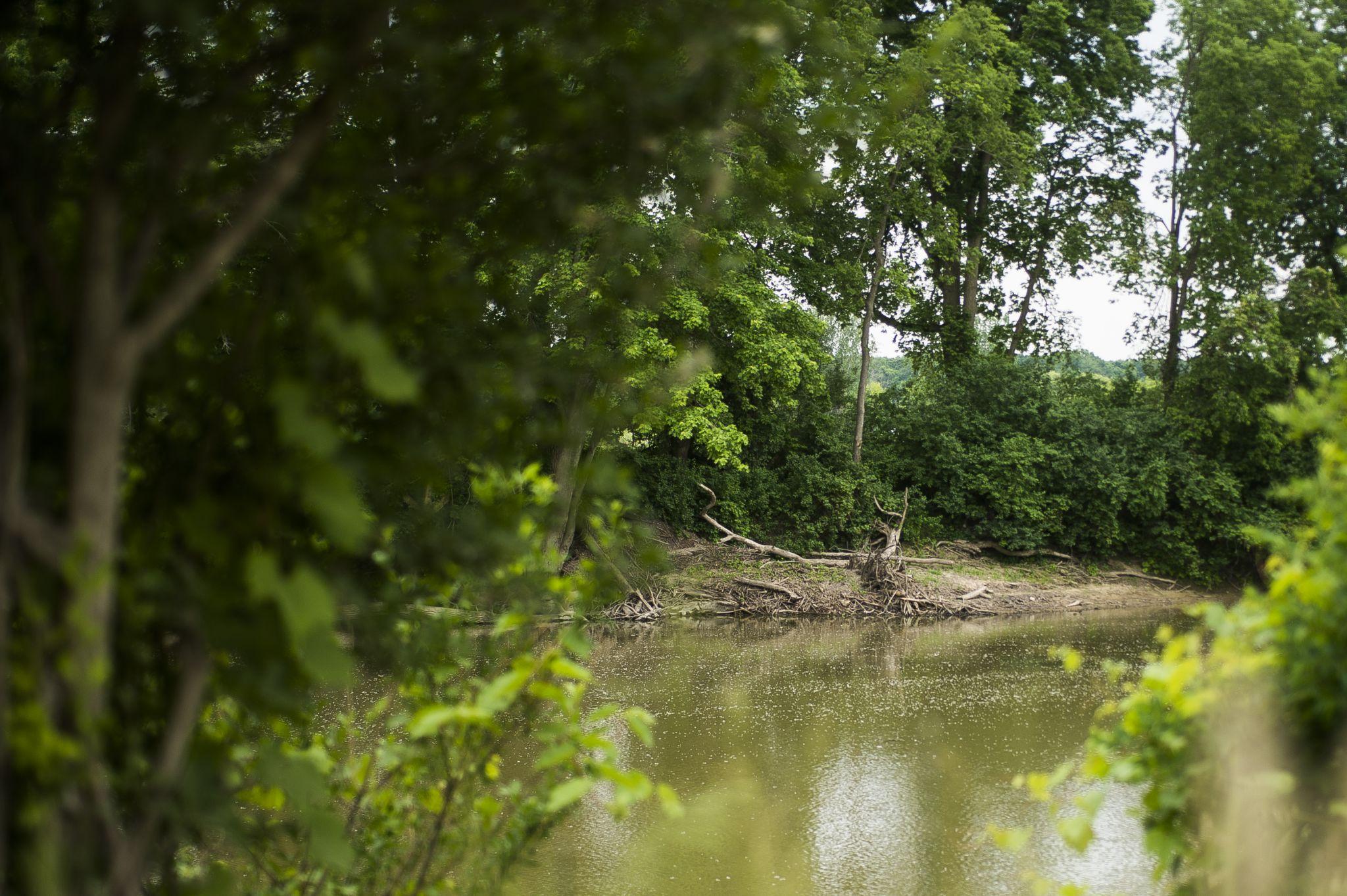 Man found in Tittabawassee River was Auburn lottery winner