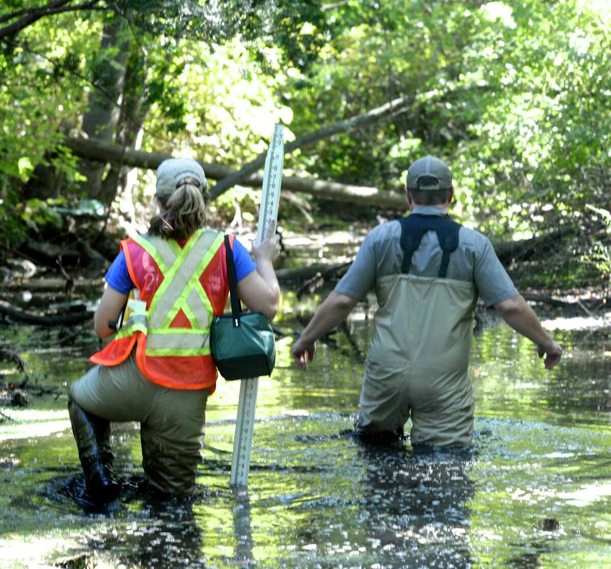 Mike Jastremski, Watershed Conservation Director, right, and Savannah Judge, Conservation Project Director, for the Housatonic Valley Association wade their way up Sympaug Brook, in Bethel, Conn, on Monday afternoon, September 12, 2016.