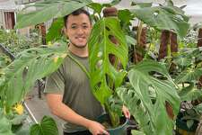 Bryan Wu with an unnamed plant from his collection.