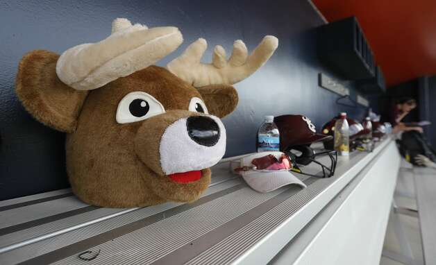 A deer mascot head is seen in the Deer Park dugout before a Class 6A state semifinal game, Friday, June 4, 2021, in Leander. Photo: Jason Fochtman/Staff Photographer / 2021 ? Houston Chronicle