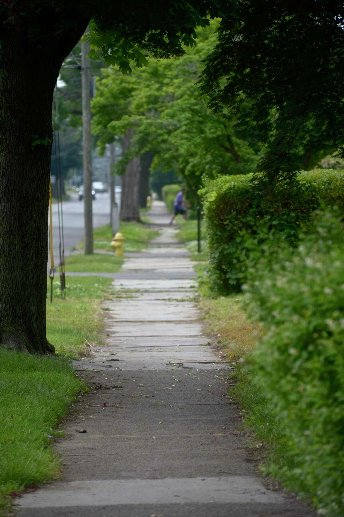 The city plans to replace the sidewalks on Balmforth Avenue between Osborne Street and North Street. Tuesday, June 8, 2021, in Danbury, Conn.