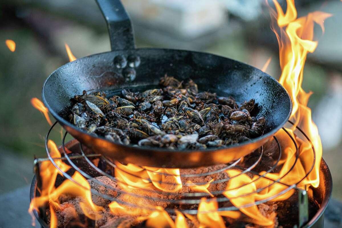 Bun Lai cooks cicadas in a pan over an open flame at an event in Washington D.C.