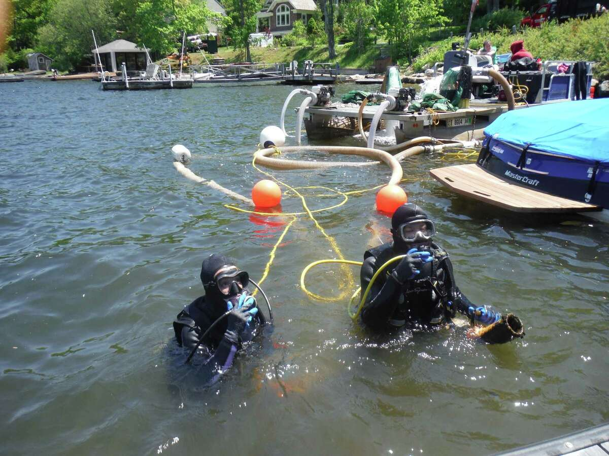 Divers off of the suction harvesting barge in Lake Waramaug use mechanical methods of eradicating aquatic invasive plant species.