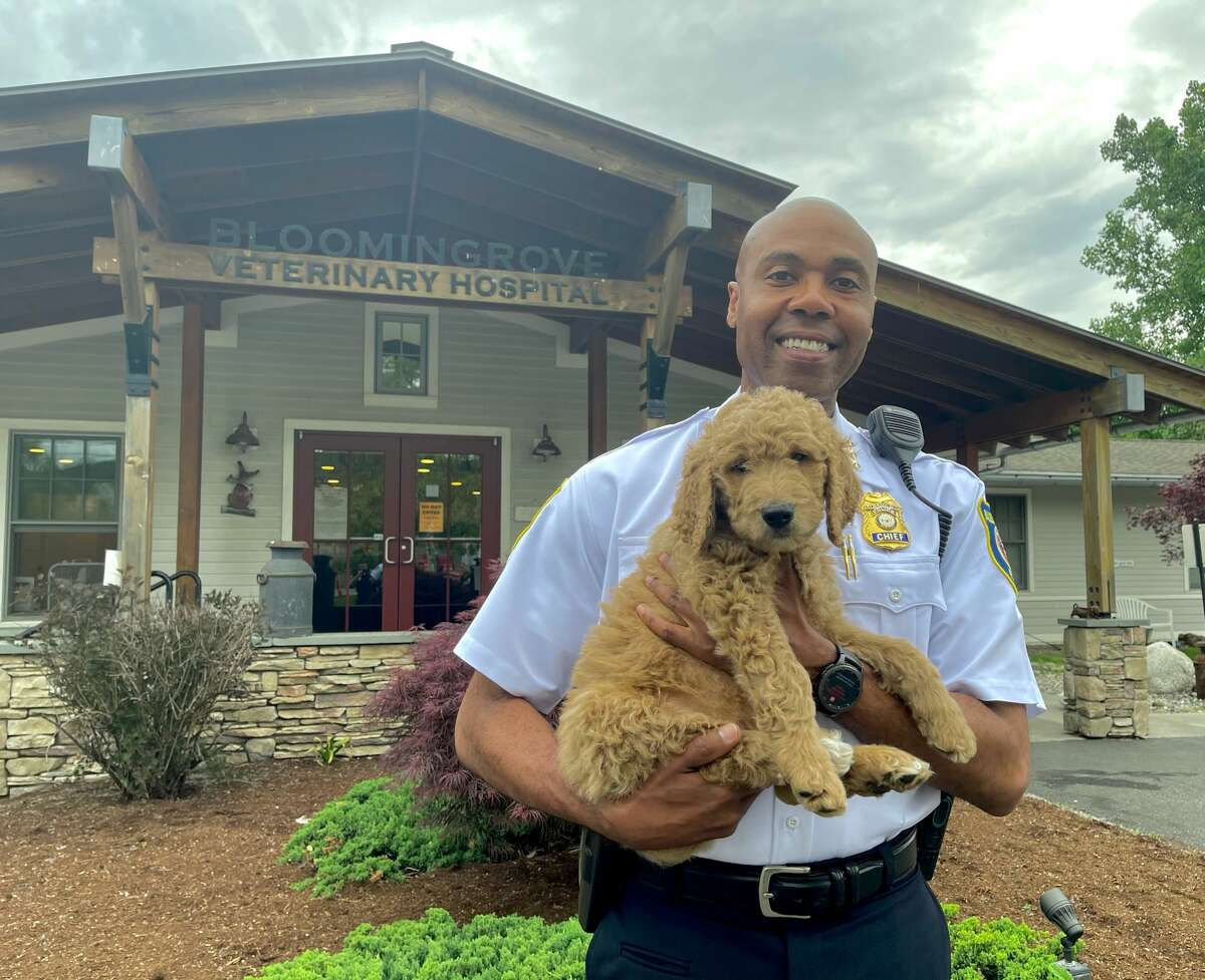 Albany Police Chief Eric Hawkins holds the latest four-legged addition to his department: an eight-week-old Goldendoodle set to join the department's therapy dog program.