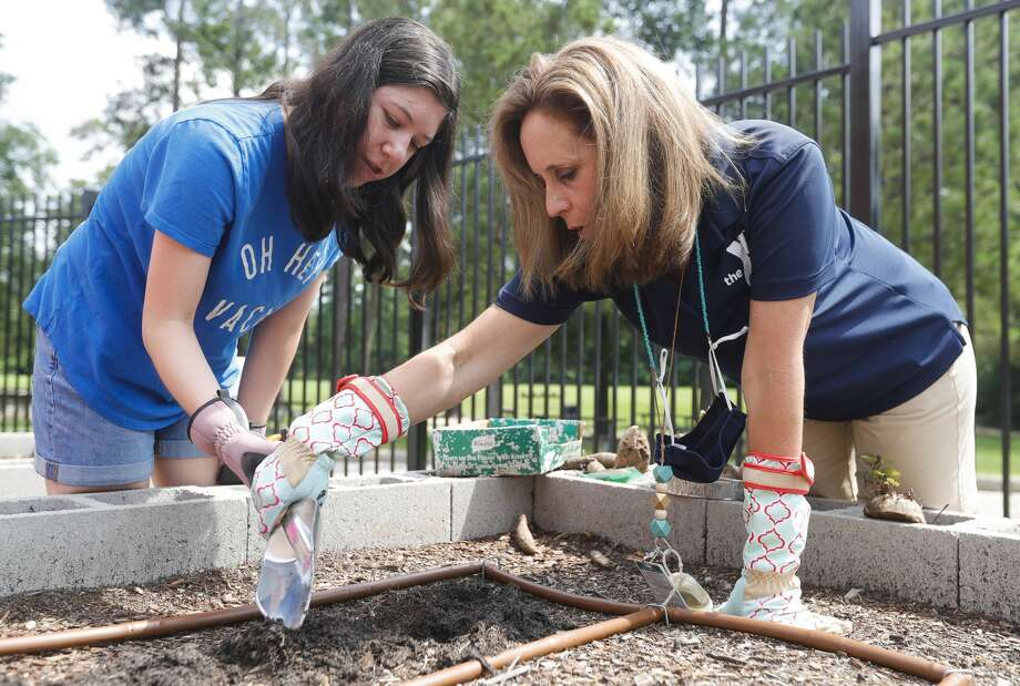 Lisa Thompson, right, helps Jordan Sallick dig a hole to plant sweet potatoes during BrightLife's gardening outing at The Woodlands Family YMCA, Wednesday, June 9, 2021, in The Woodlands. The program, which runs every Monday through Thursday for high school and adults, is part of the organization's outreach for special needs adults. Photo: Jason Fochtman/Staff Photographer / 2021 © Houston Chronicle