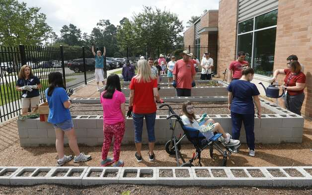 Students with The Woodlands Family YMCA's BrightLife program took part in a gardening outing, Wednesday, June 9, 2021, in The Woodlands. The program, which runs every Monday through Thursday for high school and adults, is part of the organization's outreach for special needs adults. Photo: Jason Fochtman/Staff Photographer / 2021 ? Houston Chronicle