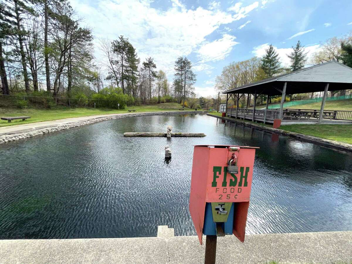 Mecosta County parks participating in the Community Open House include Paris Park (pictured), Brower, School Section Lake, Merrill-Gorrel, and Davis Bridge. (Pioneer photo/Bradley Massman)