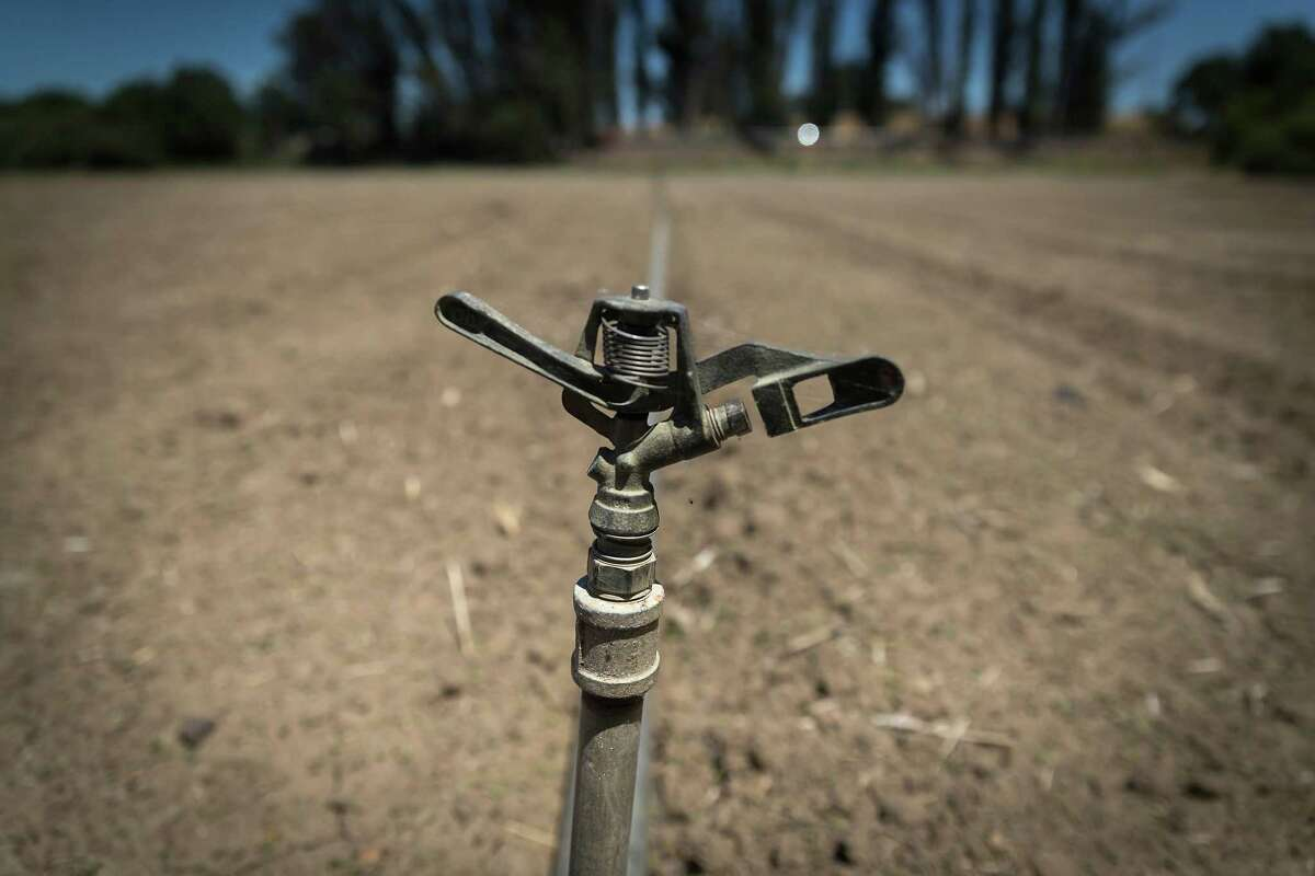 An irrigation sprinkler is shown in a field outside Santa Rosa. Because of the water shortage from the drought, the city is instituting a 20% reduction of water use.