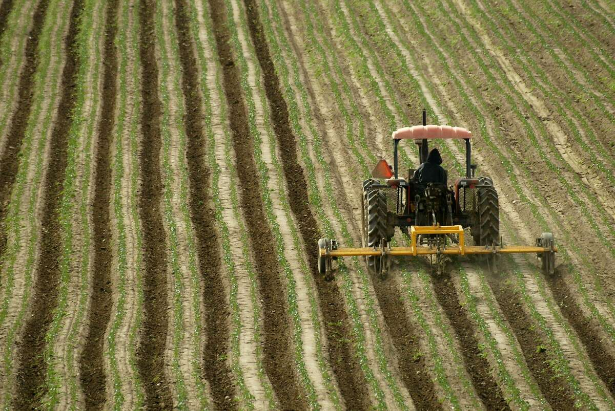 A tractor moves across a farm field in the Salinas Valley near Greenfield (Monterey County). That region traversed by Highway 101 is known as Steinbeck Country.
