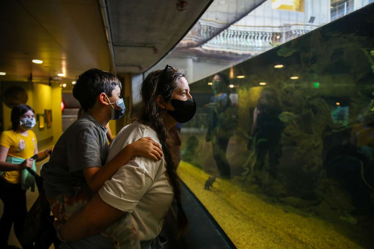 Melissa Fiddler, of Sonoma County, holds her son, Levi Fiddler, 7, as they visit the California Academy of Sciences along with family members on Thursday, June10, 2021, in San Francisco, Calif.