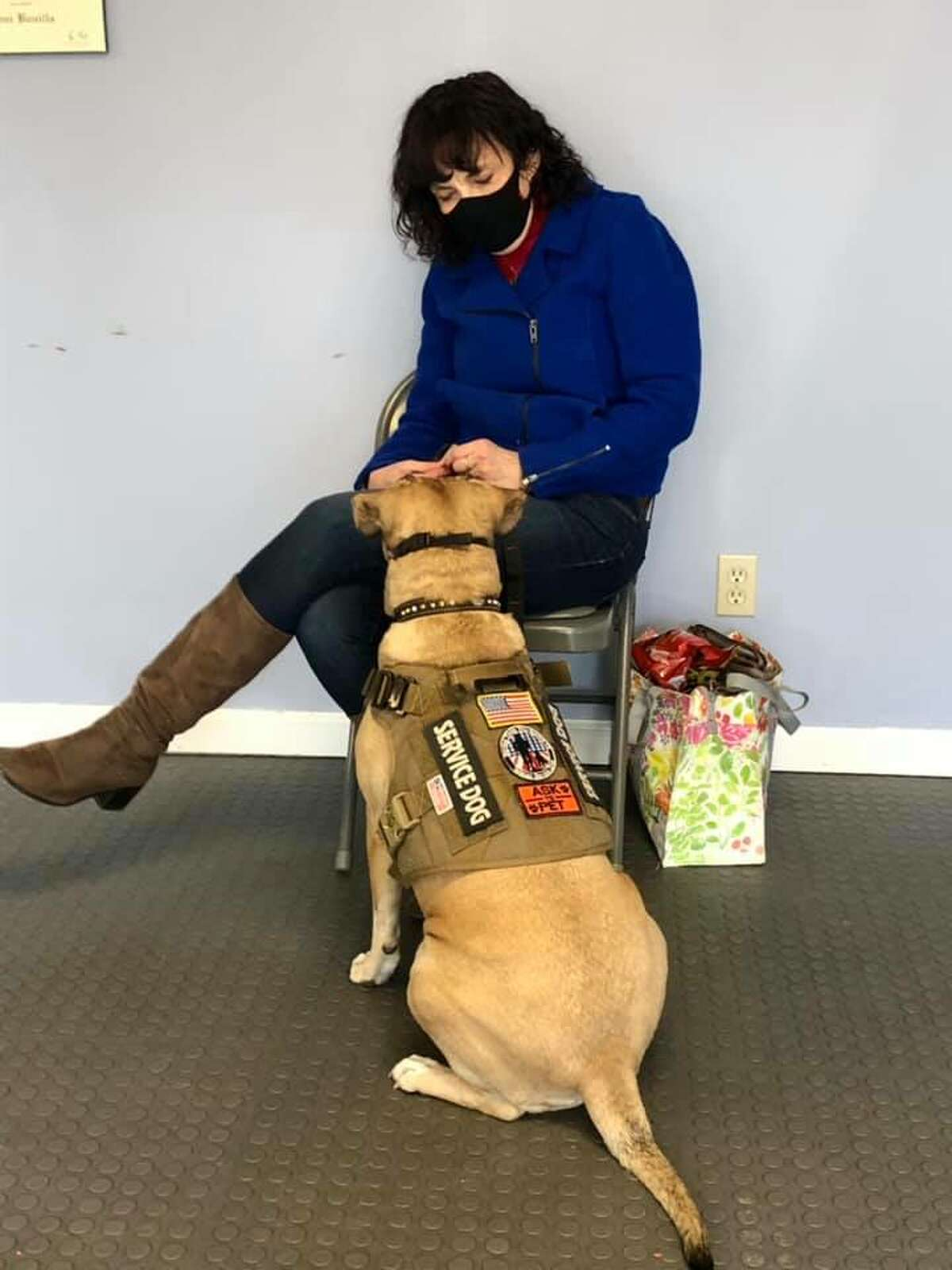 Retired Army Lt. Col. Sherie Murray trains with her service dog Harley.