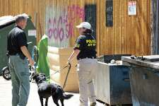 An Alcohol Tobacco and Firearms K9 officer and handler search for evidence in an alley behind Sixth Street in downtown Austin. One man is dead and at 13 others injured after an early morning shooting on June 12, 2021.