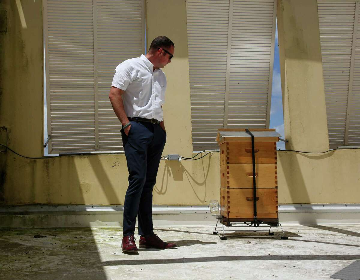 Tanger Outlet marketing manager Oliver Runco looks at the honey bees that are part of the mall's new urban beekeeping program on Friday, June 11, 2021, in Texas City.