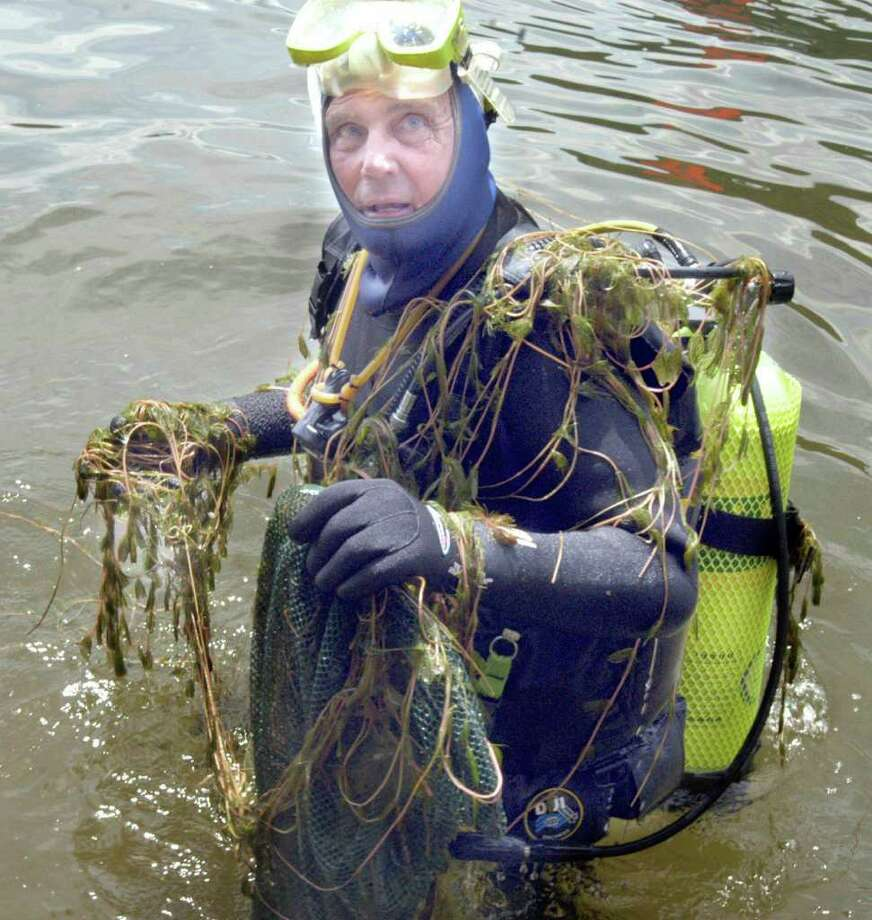 Ray Crawford is covered in Eusrian watermilfoil  that he has pulled from Candlewood Lake in this file photo from 2009. Photo: File Photo / The News-Times File Photo