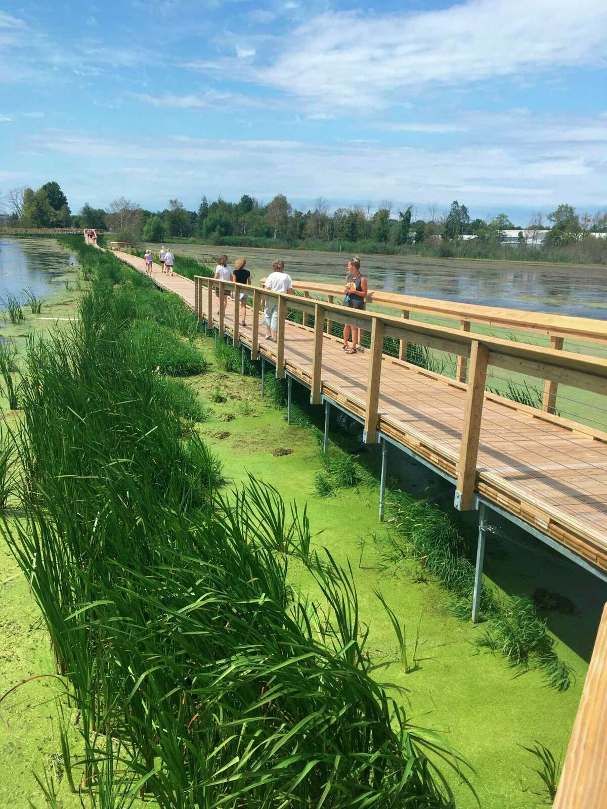 The nearly mile-long boardwalk at Arcadia Marsh built by the Grand Traverse Regional Land Conservancy. (Courtesy photo/Nate Richardson)