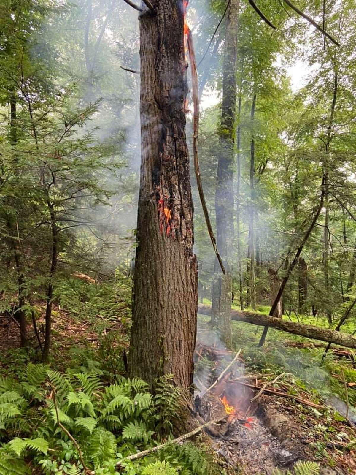 A tree on fire during a storm in Brookfield, Conn., on Monday, June 14, 2021.
