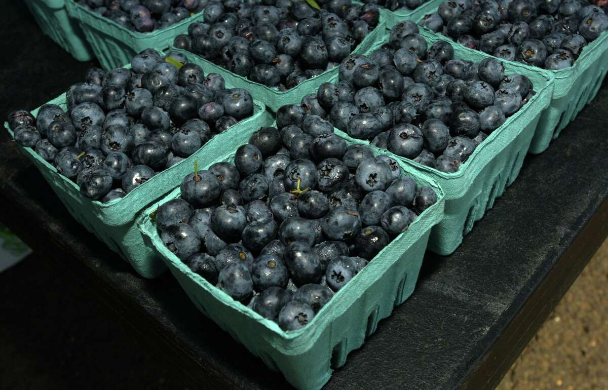 Blueberry picking season runs through July and August.